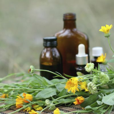 concept of calendula flower essential oil and tincture.